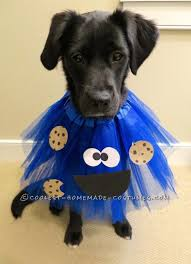 Dog Halloween Costumes Adults 25 Dog Halloween Costumes Ideas Dog Halloween