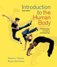 Pearson Anatomy And Physiology Lab Manual Human Anatomy And Physiology Lab Manual Fetal Pig Version 9th