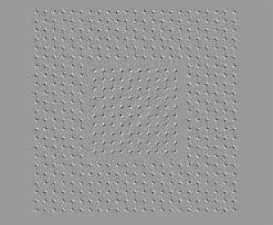 optical illusion shocks the internet can you spot how confusing