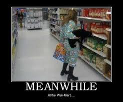 Funny Walmart Memes - meanwhile at walmart
