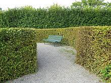 Benches In Park - bench furniture wikipedia