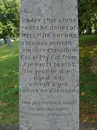 plymouth rock meaningless pebble historical digression