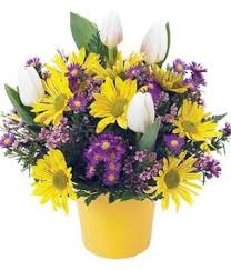 order flowers online cheap cheap flower online order find flower online order deals on line