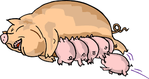 pig cartoon pictures free download clip art free clip art