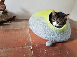 Igloo Dog House Small Make A Heated In Small Igloo Cat House Best House Design