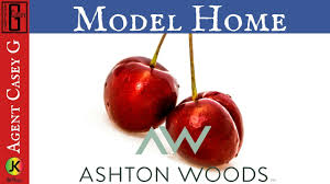 Ashton Woods Floor Plans by Ashton Woods Homes Cherry Model Is Has An Amazing Floor Plan Great