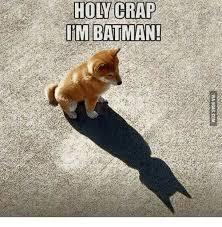 Holy Crap Meme - holy crap im batman craps meme on esmemes com