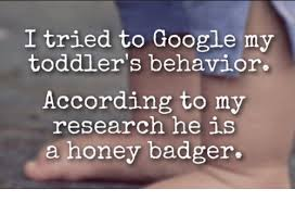 Honey Badger Memes - i tried to google my toddler s behavior according to my research