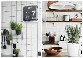 plante cuisine plantes d intérieur décorez avec des plantes vertes