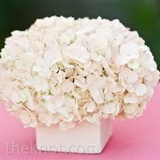 White Hydrangea Centerpiece by 60 Best Ideas For Hydrangea Centerpieces Images On Pinterest