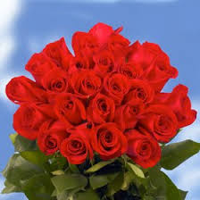 bulk roses buy cheap roses 150 madame delbard roses in cheap price