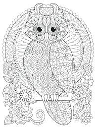 coloring page for adults owl owl color pages color your own owl coloring pages free printable