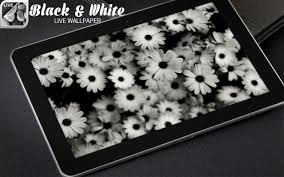 black and white live wallpaper android apps on google play