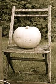 White Pumpkin Decorations Halloween 276 Best Shabby Chic Autumn Images On Pinterest Autumn Fall