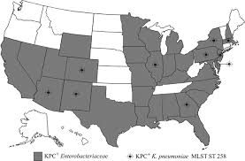 Aac Map Molecular Epidemiology Of Kpc Producing Klebsiella Pneumoniae