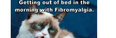 Get Out Of Bed Meme - 10 common symptoms of fibromyalgia told by memes the mighty