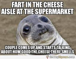 Awkward Seal Meme - awkward seal cheesy meme