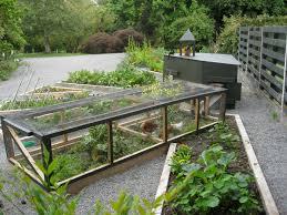 for coop raised chicken coop plans