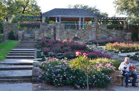 texas native plants landscaping get to know texas at the fort worth botanic garden albany kid