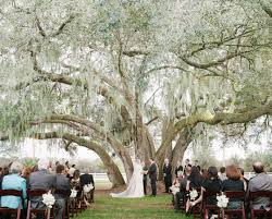tallahassee wedding venues outside venues for weddings with tent c bertha fashion