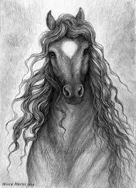 25 ide terbaik gadis kuda di pinterest fotografi kuda kuda