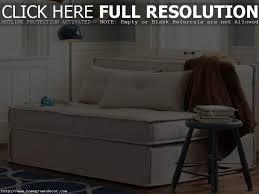 twin sofa sleeper canada sofa and sofas decoration
