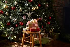 Next Christmas Window Decorations by Sumptuous Pre Lit Artificial Christmas Trees In Porch Traditional