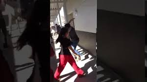 fights and crimes videos u2013 most shocking collection of fights and
