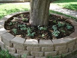 Circular Bench Around Tree Best 25 Deck Around Trees Ideas On Pinterest Tree Deck Tree
