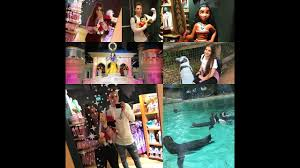 weekly vlog 1 london zoo disney shopping u0026 chatting youtube