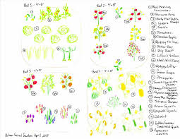 plans free how to build plan building vegetable garden drawing a