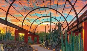 Desert Botanical Garden Restaurant The Desert Botanical Garden Gets A New Restaurant And Chef Payton