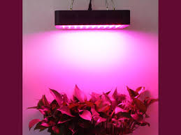 best led grow lights 2017 for plants crops and cannabis
