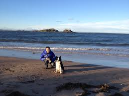 best places to walk your dog in edinburgh the edinburgh reporter
