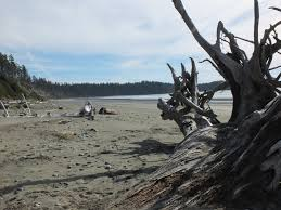 ucluelet bc canada for hiking on the beach gaping at