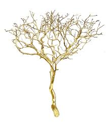 manzanita tree branches gold metallic manzanita branches 18 24 in blooms and branches