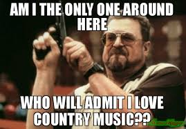 Country Music Memes - i love country music meme love best of the funny meme