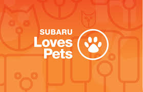 subaru logo jpg performance subaru subaru loves pets event going on now