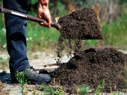 Garden Soil Types Advantages And Disadvantages Of Different Types Of Soil Hgtv