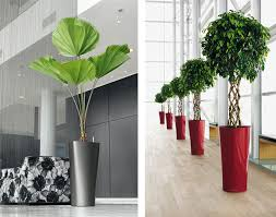 Modern Garden Planters Modern Planter Delta From Lechuza Planters Plants And Interior