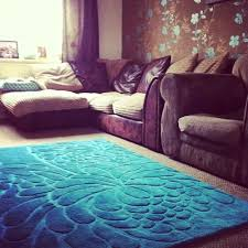 Teal Living Room Rug by Shaggy Rugs For Living Room Brown Teal Carameloffers