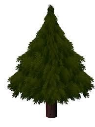 bare christmas tree christmas lights decoration