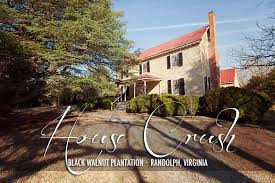 black walnut plantation 800 acres of historical magic circa