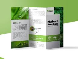 tri fold brochure template free download freebie nature tri fold brochure template free psd free psd