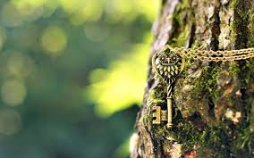 key owl pendant chain tree 6997761