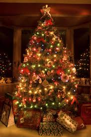 86 marvelous trees picture ideas trees for