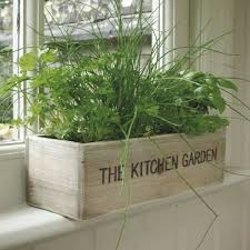 indoor herb garden kits to grow herbs indoors hgtv finding space for our herbs inside our home is a challenge love