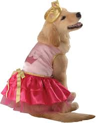 Cute Small Dog Halloween Costumes 22 Pets Costume Images Pet Costumes