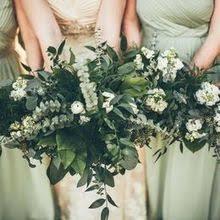 florist melbourne fl violets in bloom florist flowers melbourne fl weddingwire