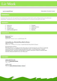 resume format for engineering freshers doctor s care free resume format download foodcity me